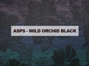 ASPS WILD ORCHID BLACK