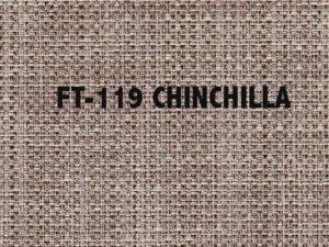 FT-119