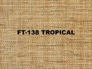 FT-138